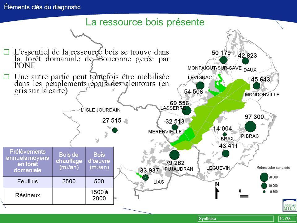 15 /38 Synthèse Éléments clés du diagnostic La ressource bois présente L'essentiel de la ressource bois se trouve dans la forêt domaniale de Bouconne