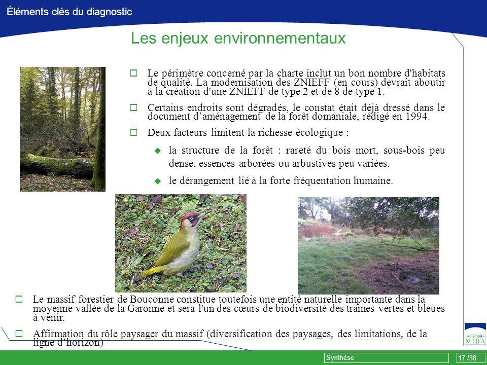 17 /38 Synthèse Éléments clés du diagnostic Les enjeux environnementaux Le périmètre concerné par la charte inclut un bon nombre d'habitats de qualité