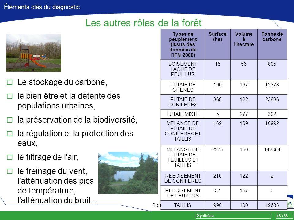 18 /38 Synthèse Éléments clés du diagnostic Les autres rôles de la forêt Source IFN Types de peuplement (issus des données de l'IFN 2000) Surface (ha)