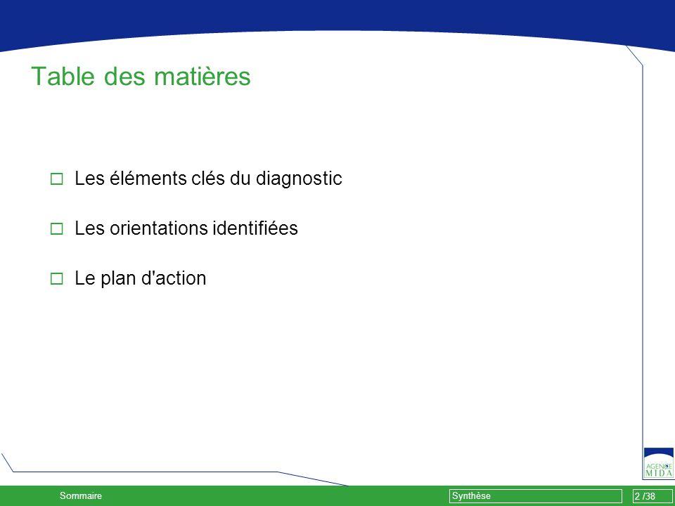 2 /38 Synthèse Table des matières Les éléments clés du diagnostic Les orientations identifiées Le plan d'action Sommaire Sigles COPIL : Comité de pilo