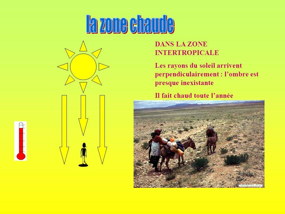 DANS LA ZONE INTERTROPICALE Les rayons du soleil arrivent perpendiculairement : lombre est presque inexistante Il fait chaud toute lannée