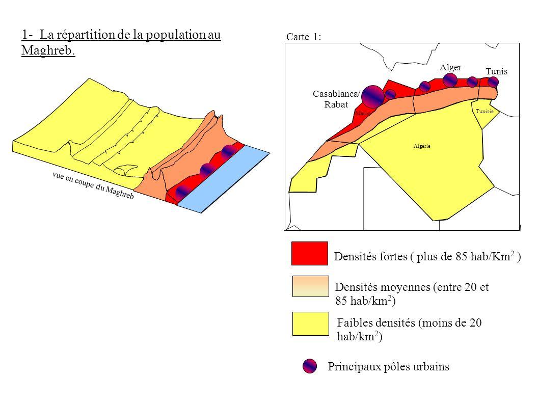 Carte 1: Algérie Maroc Tunisie Faibles densités (moins de 20 hab/km 2 ) Densités fortes ( plus de 85 hab/Km 2 ) Densités moyennes (entre 20 et 85 hab/
