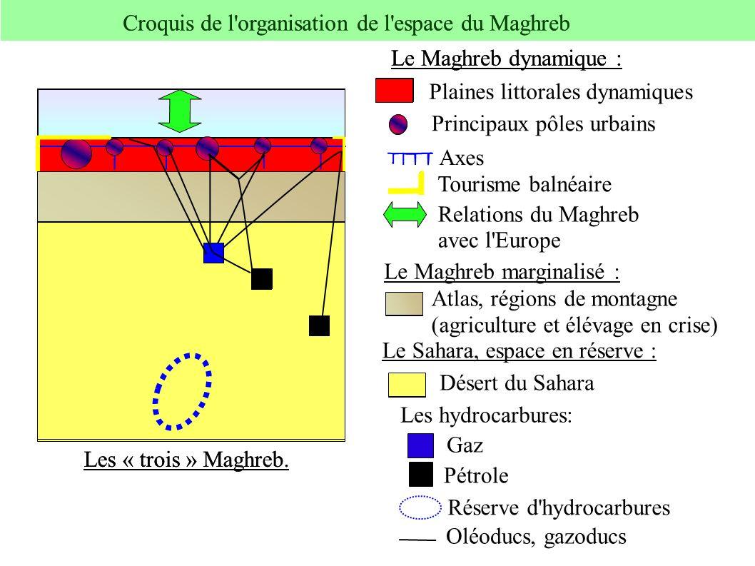 Principaux pôles urbains Le Sahara, espace en réserve : Désert du Sahara Pétrole Les hydrocarbures: Plaines littorales dynamiques Le Maghreb dynamique