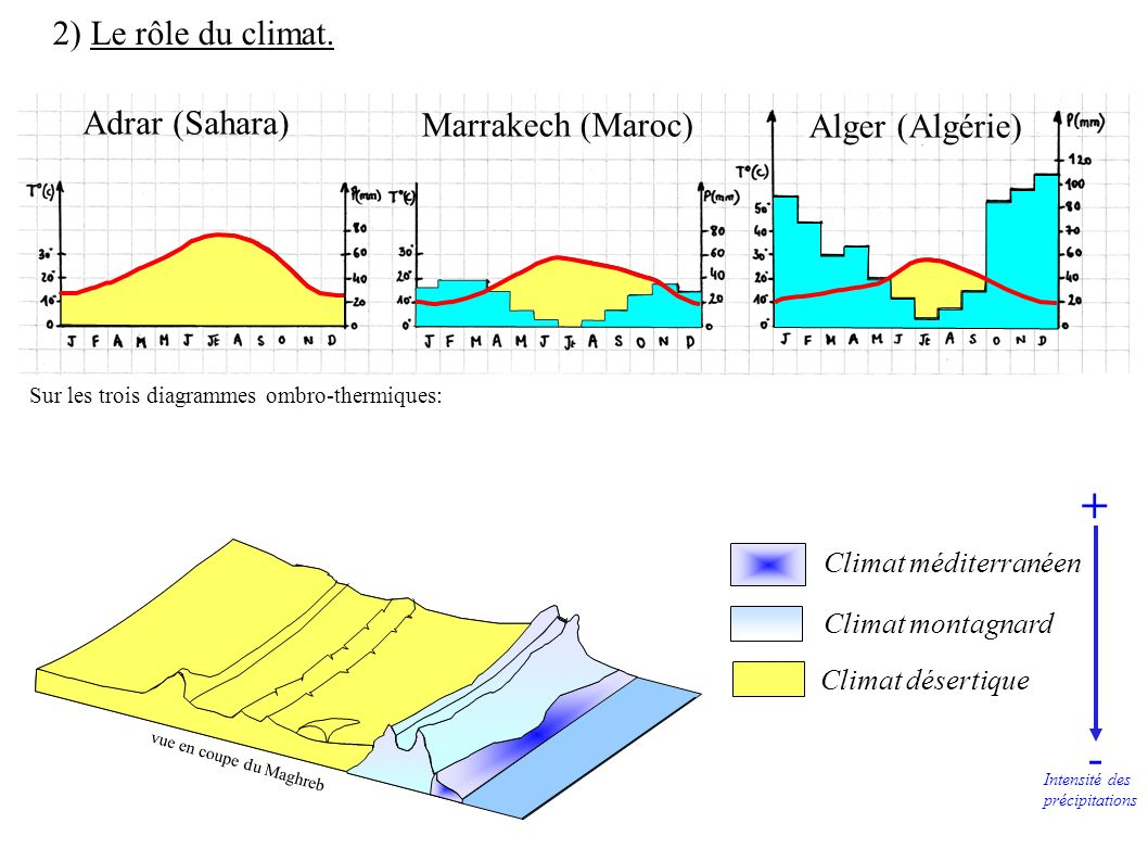 Climat méditerranéen Climat montagnard Climat désertique 2) Le rôle du climat. vue en coupe du Maghreb Adrar (Sahara) Marrakech (Maroc) Alger (Algérie