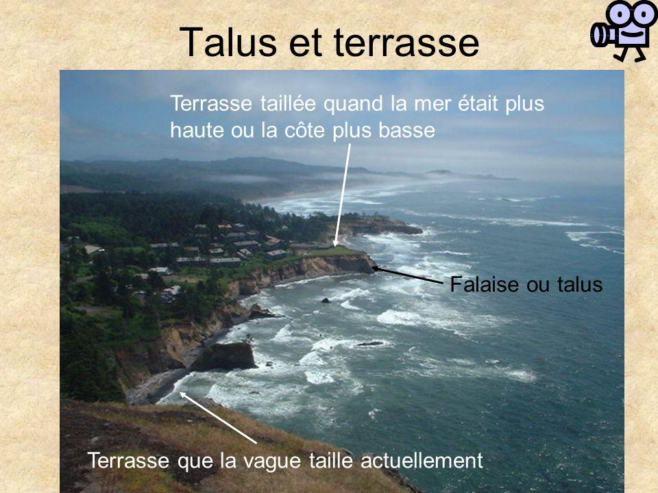 Talus et terrasse Terrasse taillée quand la mer était plus haute ou la côte plus basse Terrasse que la vague taille actuellement Falaise ou talus