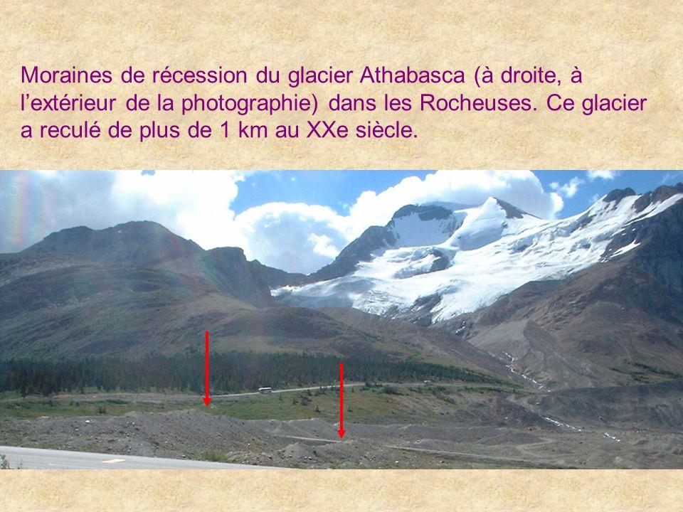 Moraines de récession du glacier Athabasca (à droite, à lextérieur de la photographie) dans les Rocheuses. Ce glacier a reculé de plus de 1 km au XXe
