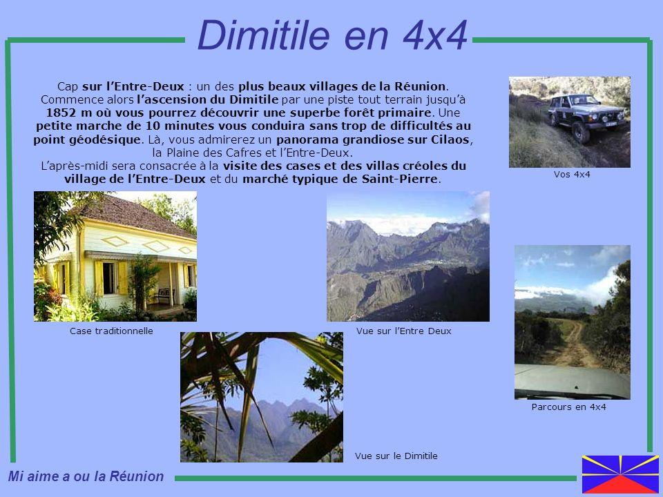 Cap sur lEntre-Deux : un des plus beaux villages de la Réunion. Commence alors lascension du Dimitile par une piste tout terrain jusquà 1852 m où vous