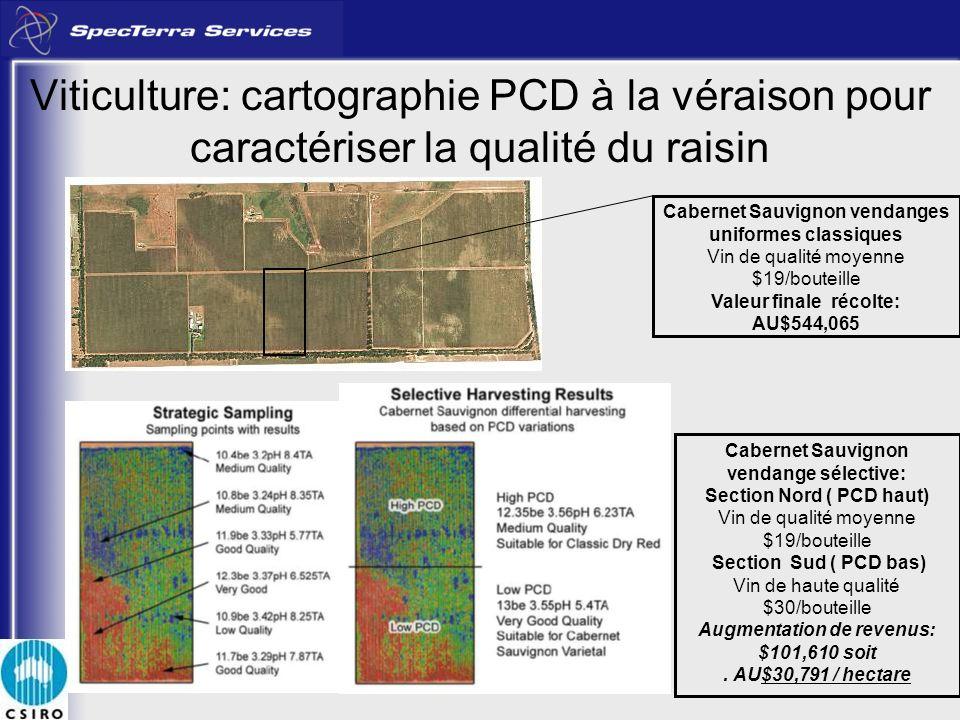 Viticulture: cartographie PCD à la véraison pour caractériser la qualité du raisin Cabernet Sauvignon vendanges uniformes classiques Vin de qualité mo