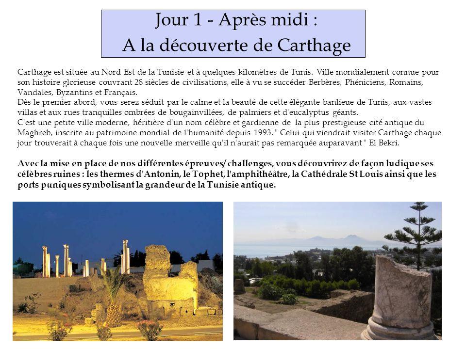 Jour 1 - Après midi : A la découverte de Carthage Carthage est située au Nord Est de la Tunisie et à quelques kilomètres de Tunis.