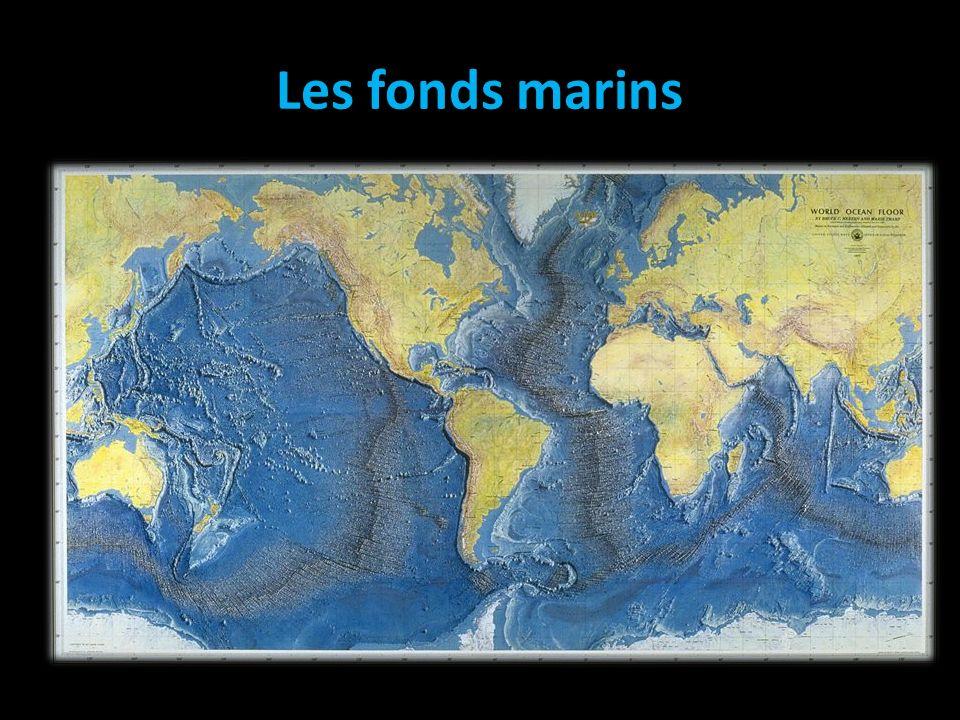 Les fonds marins