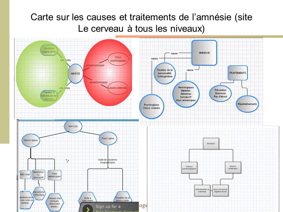 Cours Environnements Informatisés dApprentissage – 2010-2011 - M. Bétrancourt & K. Benetos Carte sur les causes et traitements de lamnésie (site Le ce