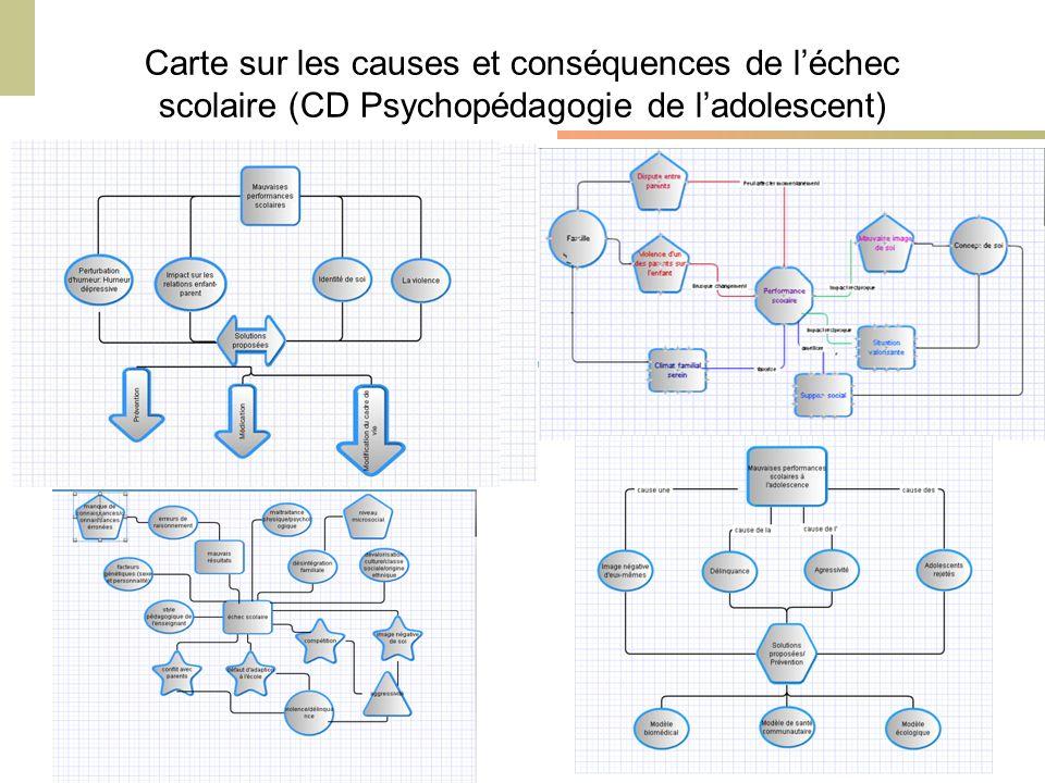 Cours Environnements Informatisés dApprentissage – 2010-2011 - M. Bétrancourt & K. Benetos Carte sur les causes et conséquences de léchec scolaire (CD