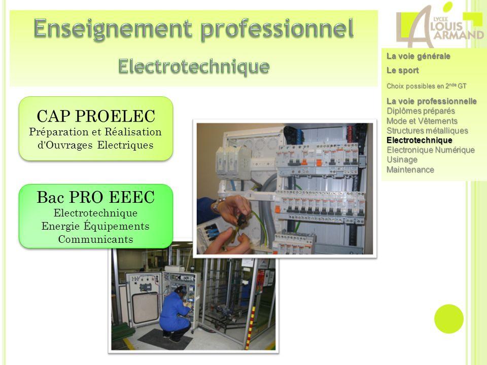 CAP PROELEC Préparation et Réalisation d'Ouvrages Electriques CAP PROELEC Préparation et Réalisation d'Ouvrages Electriques Bac PRO EEEC Electrotechni