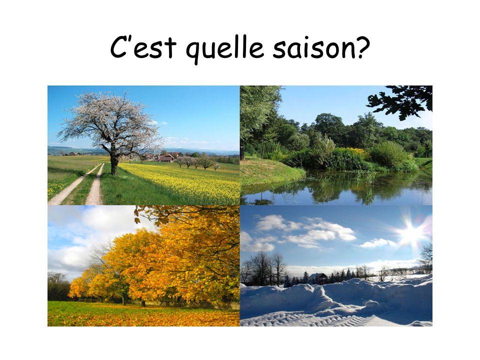 Cest quelle saison?
