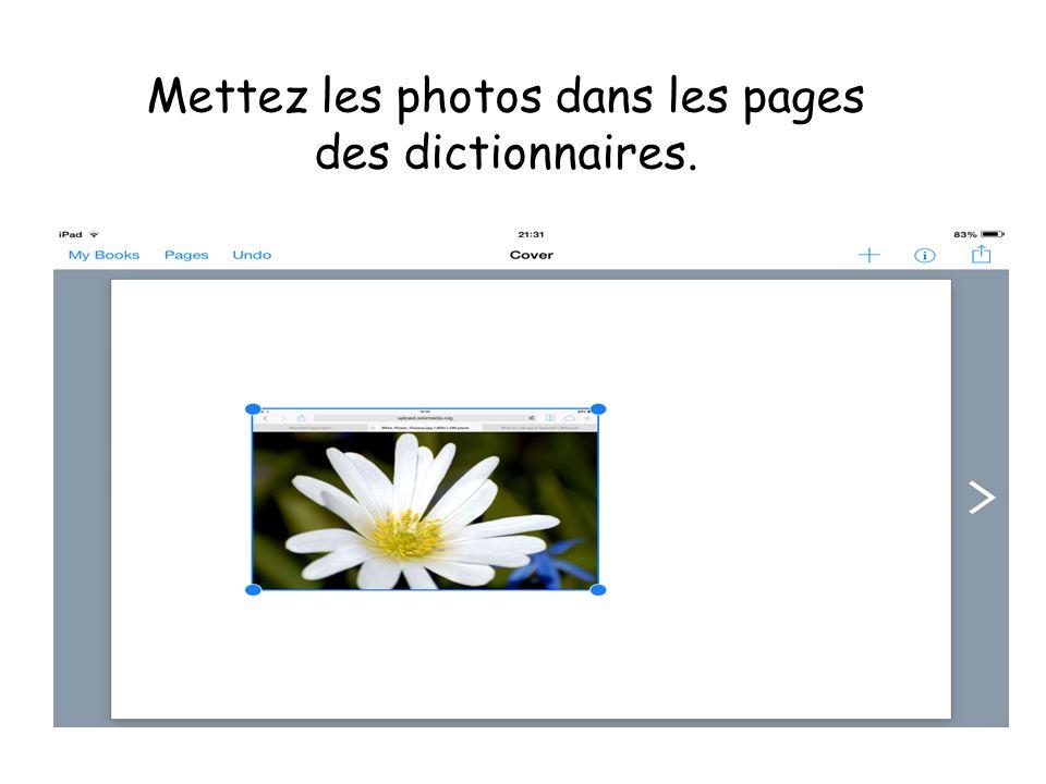 Mettez les photos dans les pages des dictionnaires.