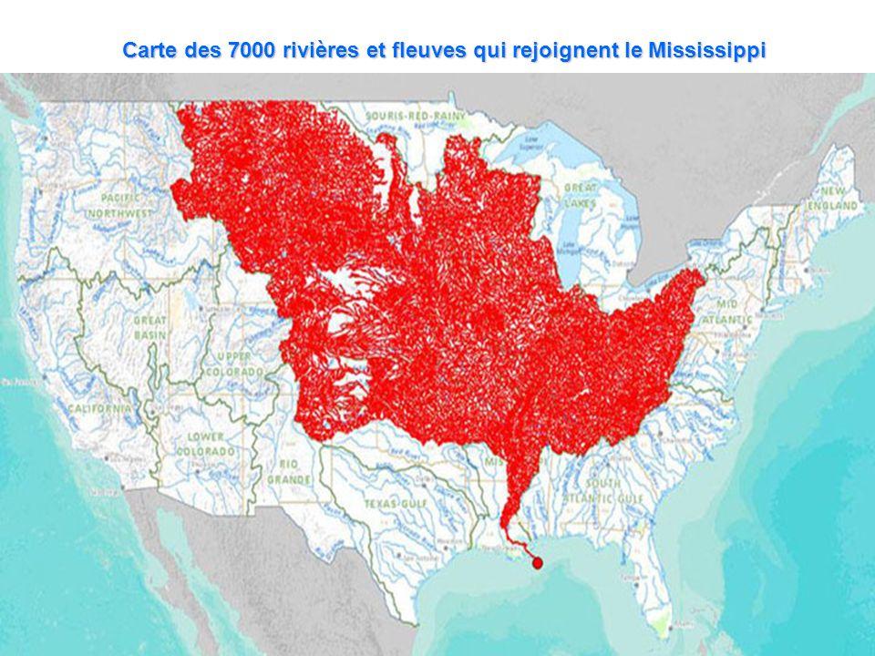 Carte des 7000 rivières et fleuves qui rejoignent le Mississippi