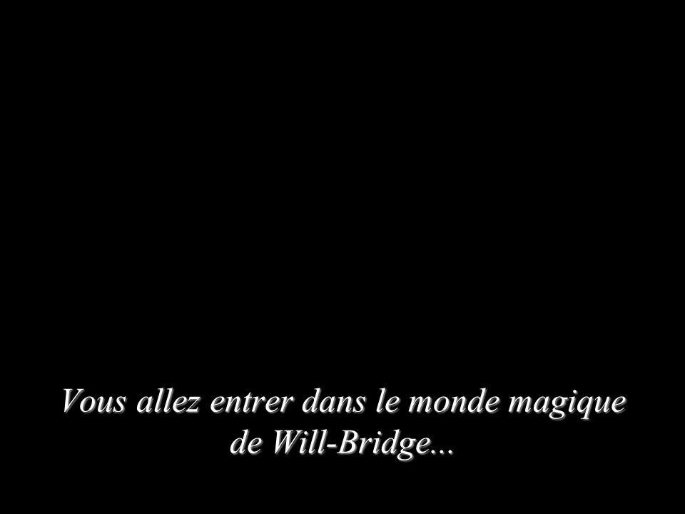 Vous allez entrer dans le monde magique de Will-Bridge...