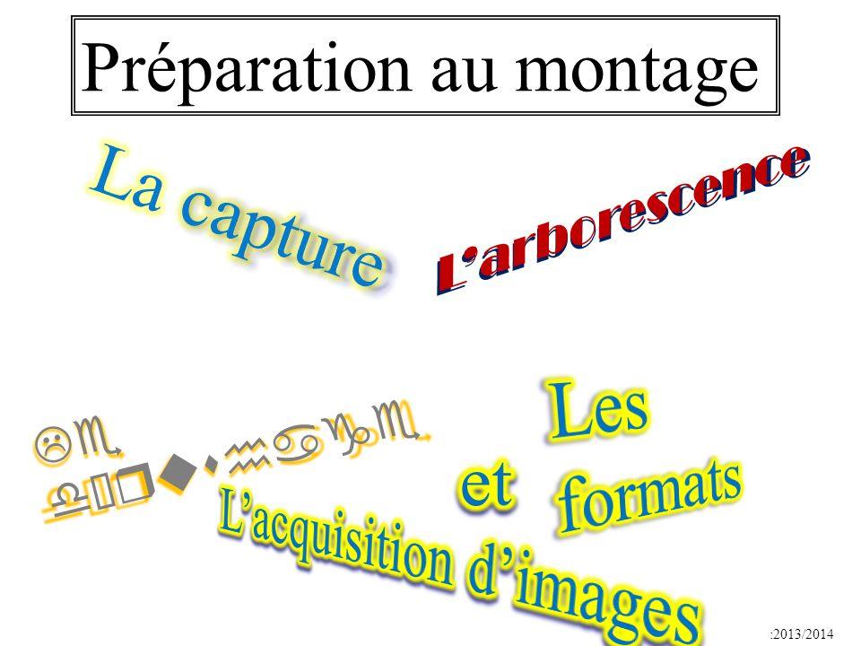 :2013/2014 Préparation au montage Larborescence Le dérushage