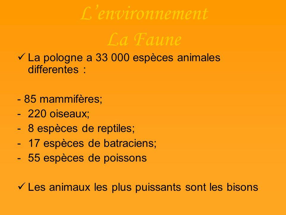 Lenvironnement La Faune La pologne a 33 000 espèces animales differentes : - 85 mammifères; -220 oiseaux; -8 espèces de reptiles; -17 espèces de batra