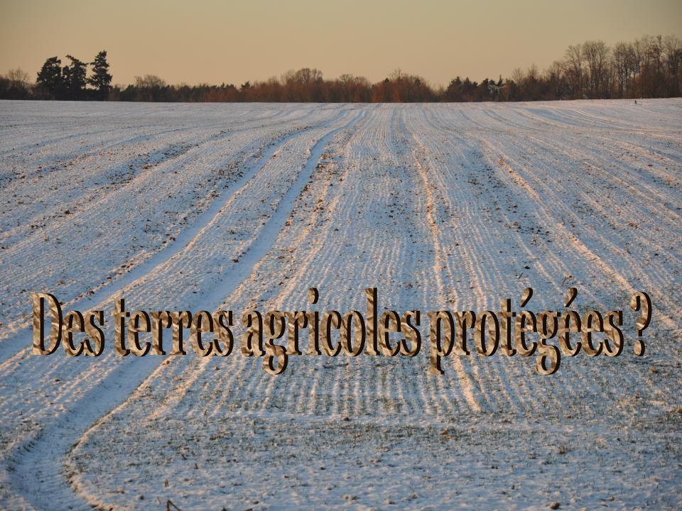 Aujourdhui quelle est létendue des espaces agricoles, selon la SAFER ?