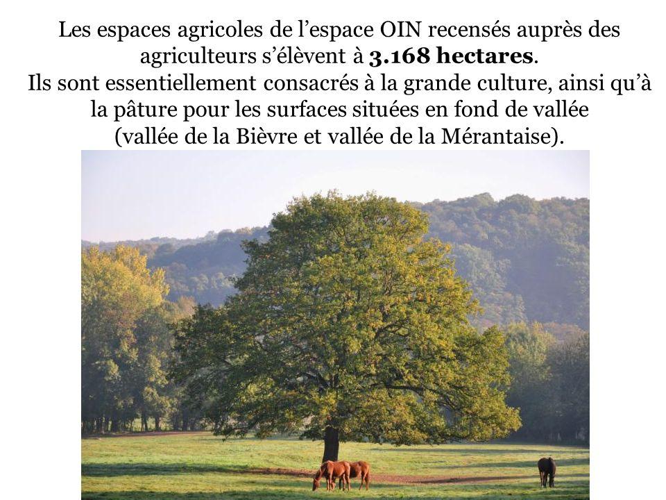 Les espaces agricoles de lespace OIN recensés auprès des agriculteurs sélèvent à 3.168 hectares. Ils sont essentiellement consacrés à la grande cultur