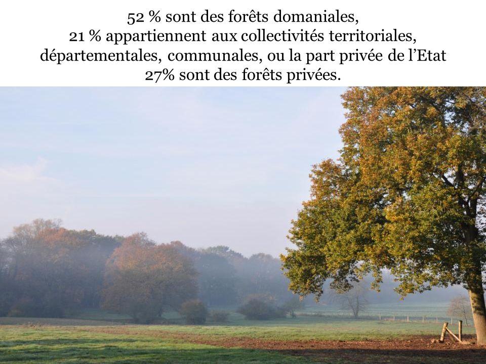 52 % sont des forêts domaniales, 21 % appartiennent aux collectivités territoriales, départementales, communales, ou la part privée de lEtat 27% sont des forêts privées.