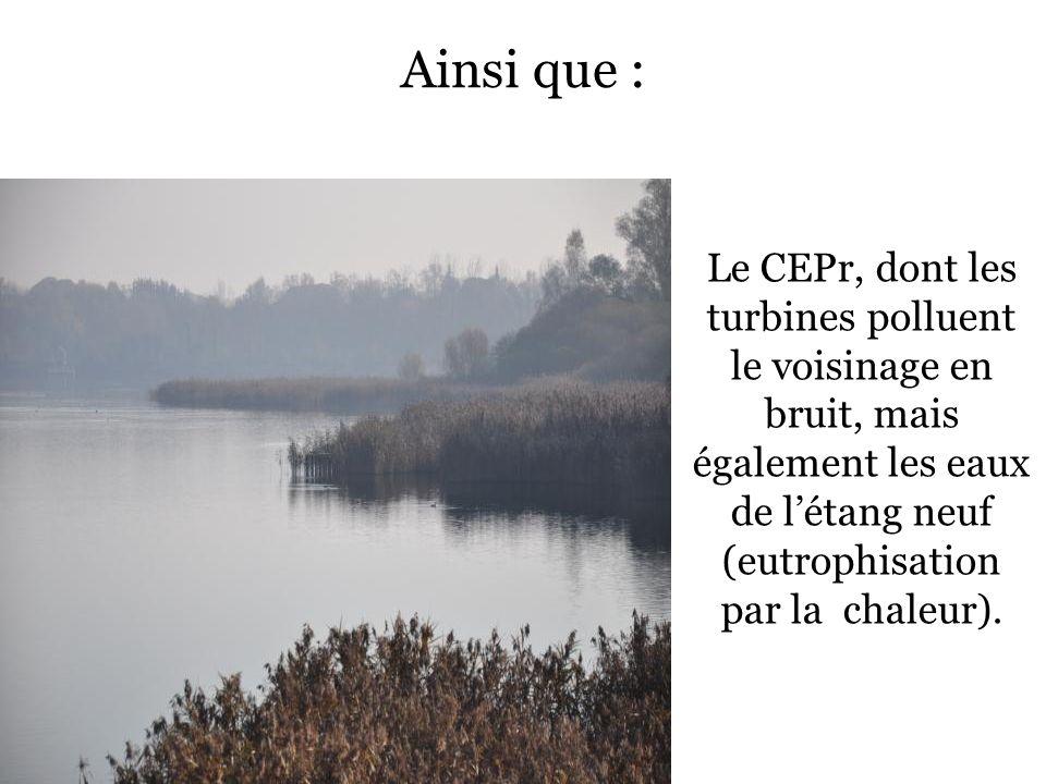 Ainsi que : Le CEPr, dont les turbines polluent le voisinage en bruit, mais également les eaux de létang neuf (eutrophisation par la chaleur).
