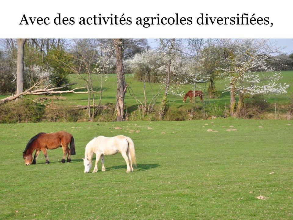 Avec des activités agricoles diversifiées,