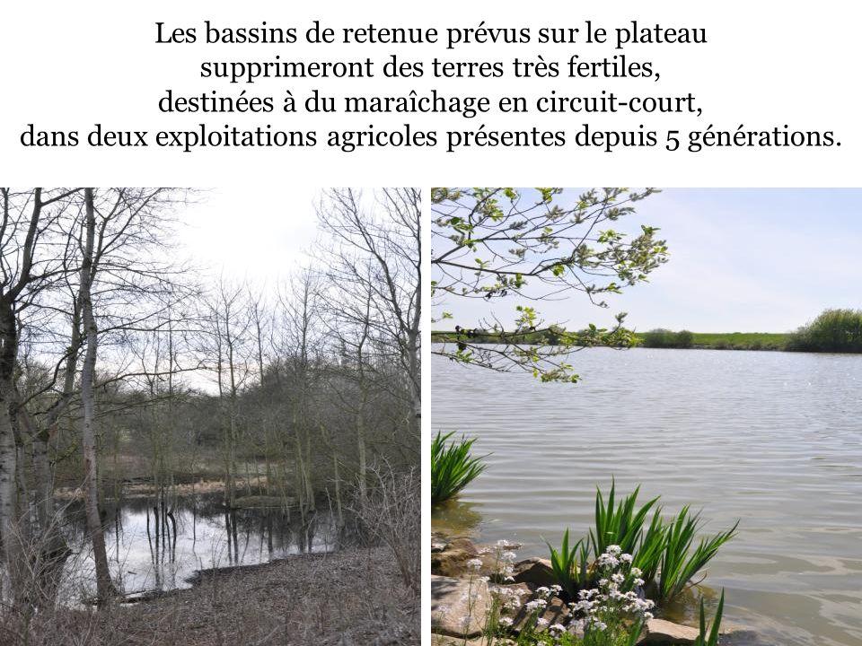Les bassins de retenue prévus sur le plateau supprimeront des terres très fertiles, destinées à du maraîchage en circuit-court, dans deux exploitation
