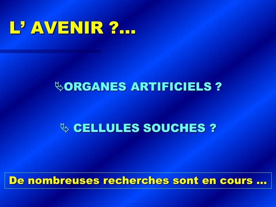 L AVENIR ?... L AVENIR ?... ORGANES ARTIFICIELS ? ORGANES ARTIFICIELS ? CELLULES SOUCHES ? CELLULES SOUCHES ? De nombreuses recherches sont en cours …