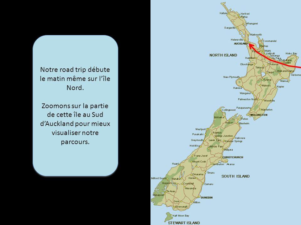 Après avoir succinctement survolé le continent Antarctique, nous atterrissons donc à Auckland, le 22 février, alors que nous avions embarqué à Santiago le 20.