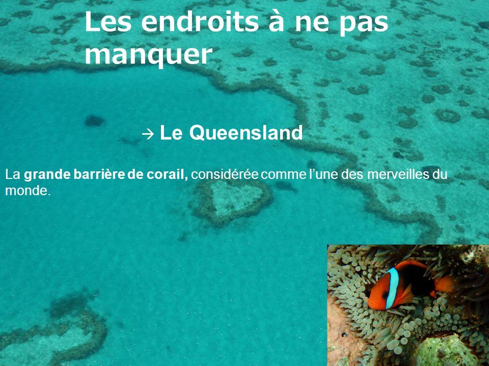 Les endroits à ne pas manquer Le Queensland La grande barrière de corail, considérée comme lune des merveilles du monde.
