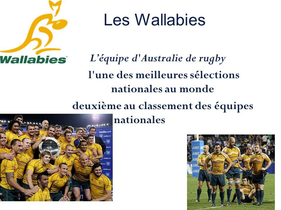 Les Wallabies Léquipe d'Australie de rugby l'une des meilleures sélections nationales au monde deuxième au classement des équipes nationales de rugby