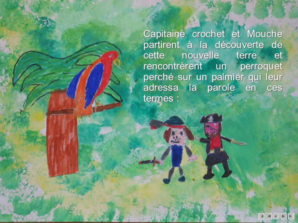 Capitaine crochet et Mouche partirent à la découverte de cette nouvelle terre et rencontrèrent un perroquet perché sur un palmier qui leur adressa la parole en ces termes :