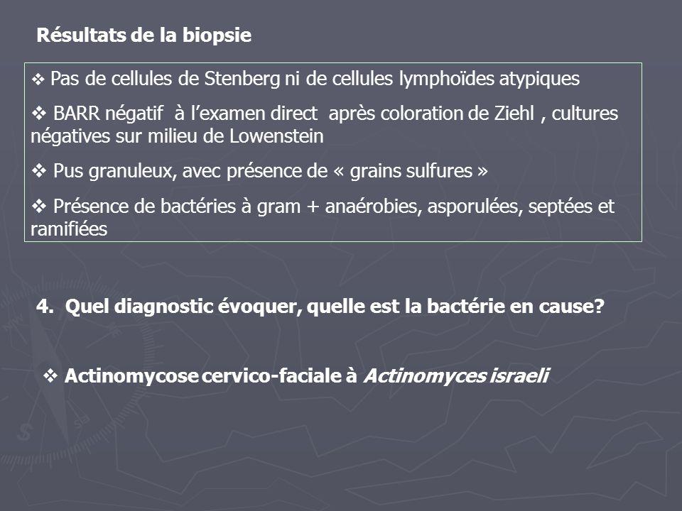 4. Quel diagnostic évoquer, quelle est la bactérie en cause? Pas de cellules de Stenberg ni de cellules lymphoïdes atypiques BARR négatif à lexamen di