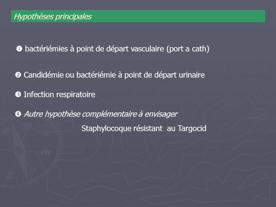 Infection respiratoire bactériémies à point de départ vasculaire (port a cath) Hypothèses principales Autre hypothèse complémentaire à envisager Staph