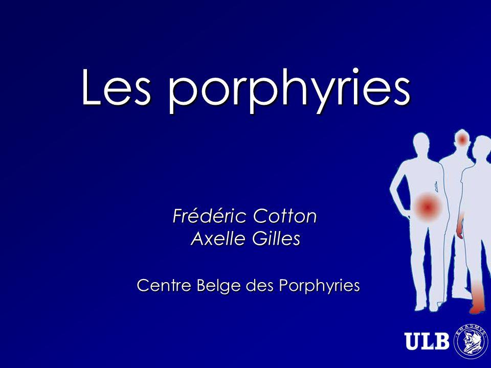 Les porphyries Frédéric Cotton Axelle Gilles Centre Belge des Porphyries