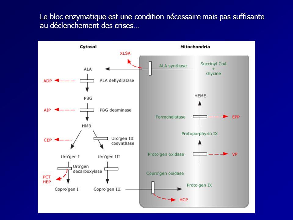 Le bloc enzymatique est une condition nécessaire mais pas suffisante au déclenchement des crises…