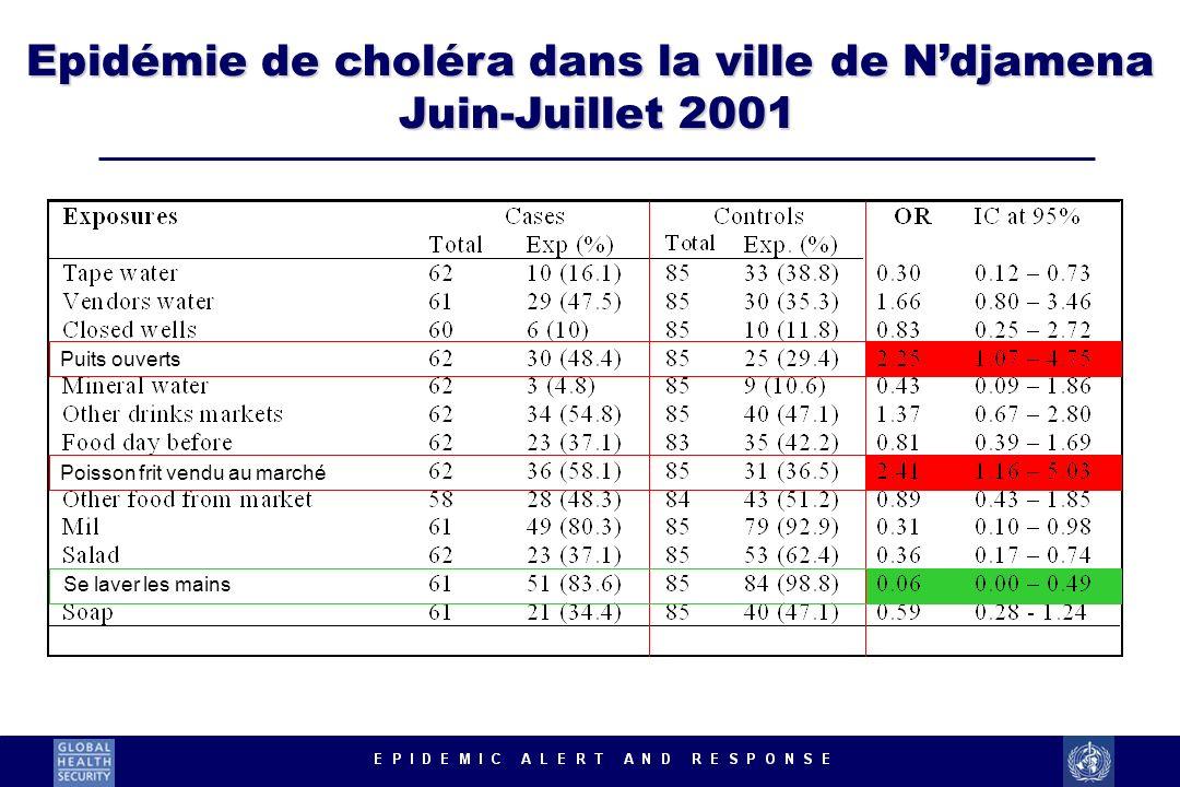 Epidémie de choléra dans la ville de Ndjamena Juin-Juillet 2001 Puits ouverts Poisson frit vendu au marché Se laver les mains