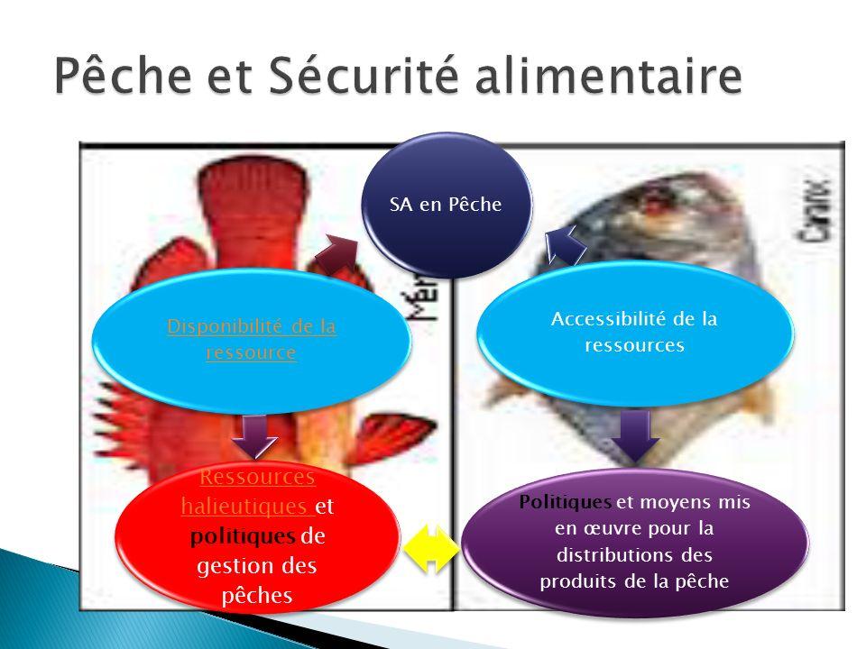 SA en Pêche Accessibilité de la ressources Politiques et moyens mis en œuvre pour la distributions des produits de la pêche Ressources halieutiques Re