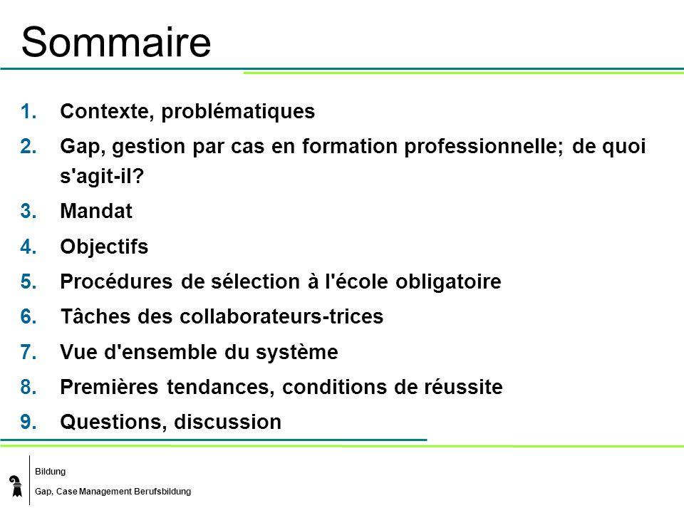 Bildung Gap, Case Management Berufsbildung Sommaire 1.Contexte, problématiques 2.Gap, gestion par cas en formation professionnelle; de quoi s'agit-il?