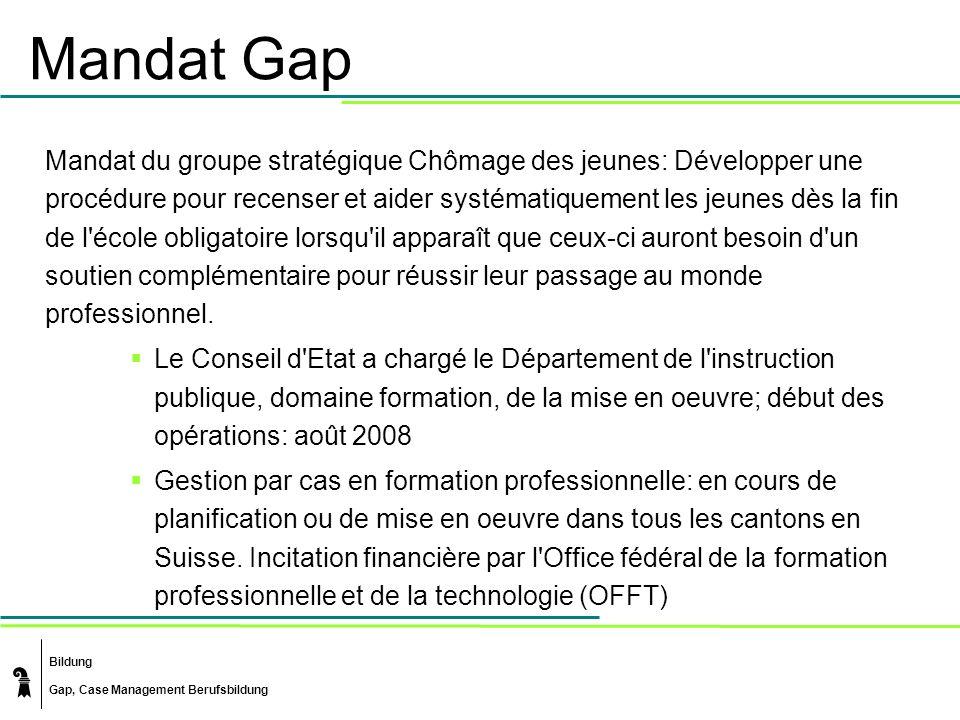 Bildung Gap, Case Management Berufsbildung Mandat Gap Mandat du groupe stratégique Chômage des jeunes: Développer une procédure pour recenser et aider
