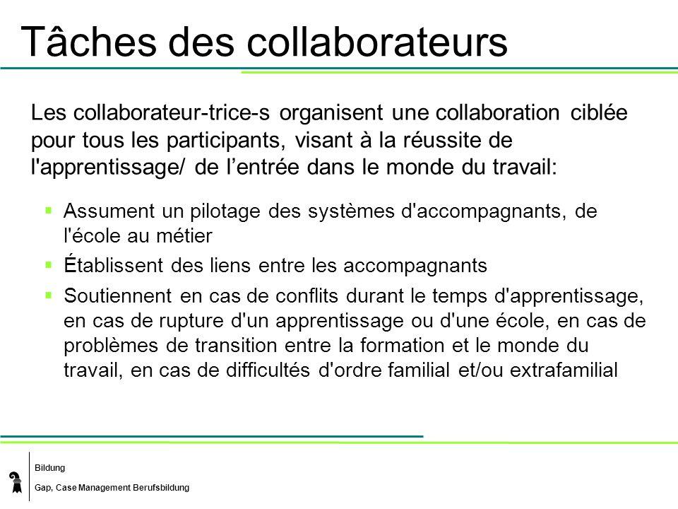 Bildung Gap, Case Management Berufsbildung Tâches des collaborateurs Les collaborateur-trice-s organisent une collaboration ciblée pour tous les parti