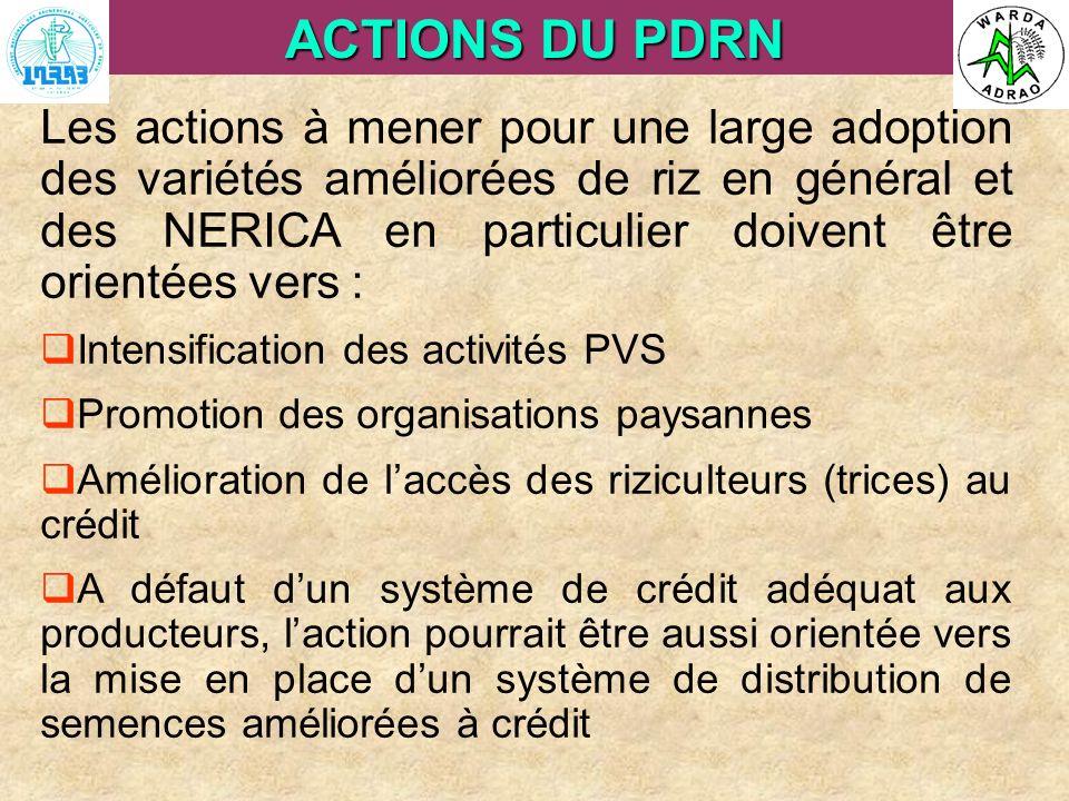 ARI Steering Committee, Cotonou, 23- 25 April, 2007 ACTIONS DU PDRN Les actions à mener pour une large adoption des variétés améliorées de riz en géné