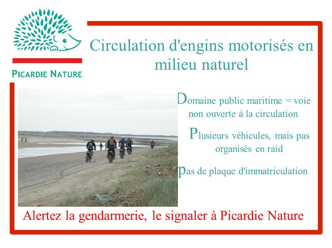 Circulation d'engins motorisés en milieu naturel D omaine public maritime = voie non ouverte à la circulation P lusieurs véhicules, mais pas organisés