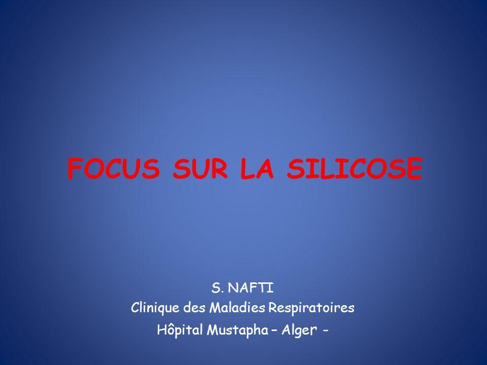 FOCUS SUR LA SILICOSE S. NAFTI Clinique des Maladies Respiratoires Hôpital Mustapha – Alge r -