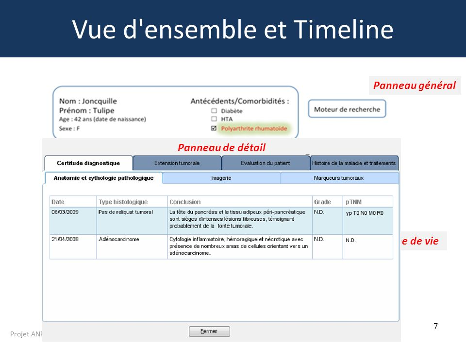 Projet ANR TECSAN 2011 N° ANR-11-TECS-012 7 Vue d'ensemble et Timeline Panneau général Panneau de détail Ligne de vie