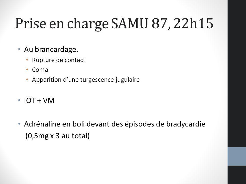 Prise en charge SAMU 87, 22h15 Au brancardage, Rupture de contact Coma Apparition dune turgescence jugulaire IOT + VM Adrénaline en boli devant des ép