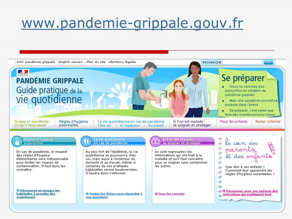www.pandemie-grippale.gouv.fr