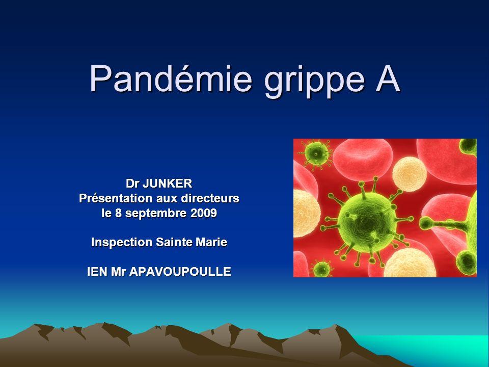 Pandémie grippe A Dr JUNKER Présentation aux directeurs le 8 septembre 2009 Inspection Sainte Marie IEN Mr APAVOUPOULLE